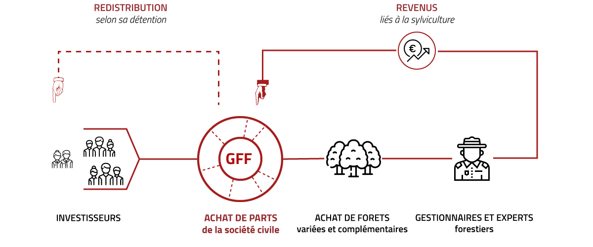 infographie-GFF
